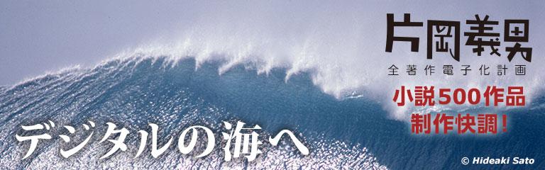 デジタルの海へ