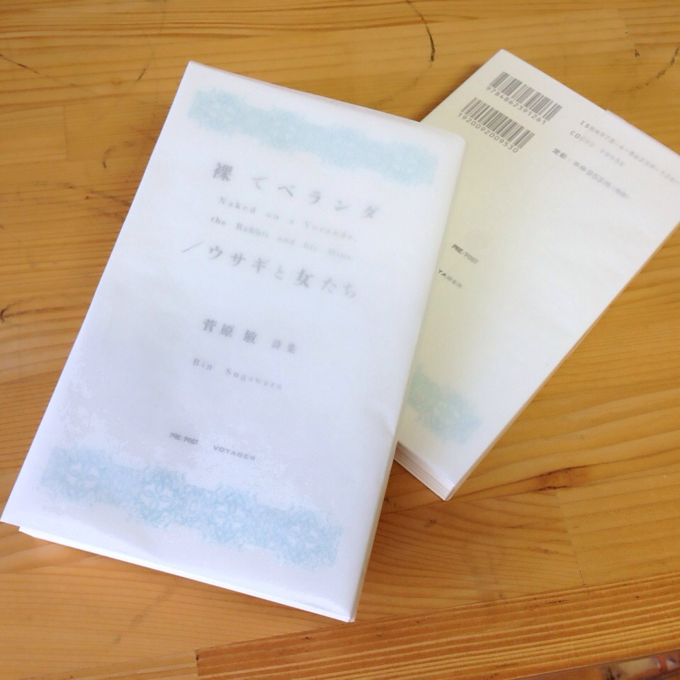 paperback_ph01.jpg